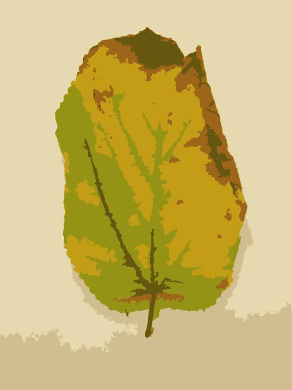 Free Missouri Fall Tree Leaves 3