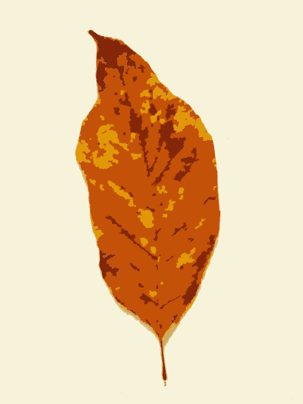Free Fall leaves with color 3