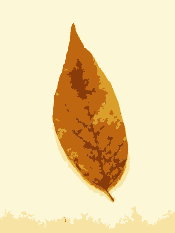 Free Fall leaves with color 2