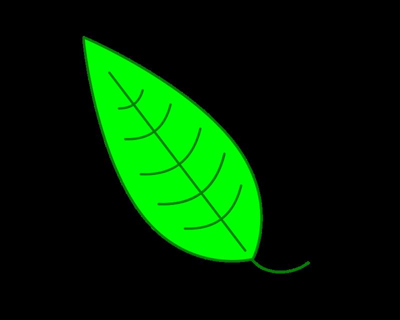 Free Leaf - Green Simple Leaf