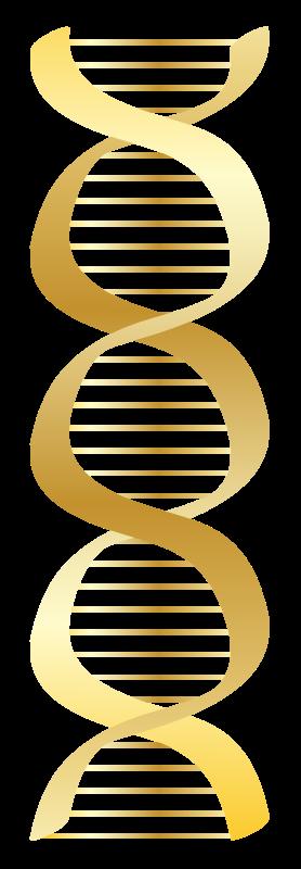 Free Gold DNA icon