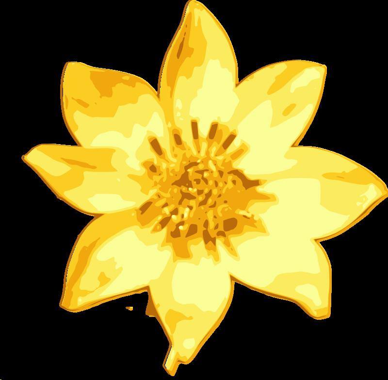 Free Meskel daisy