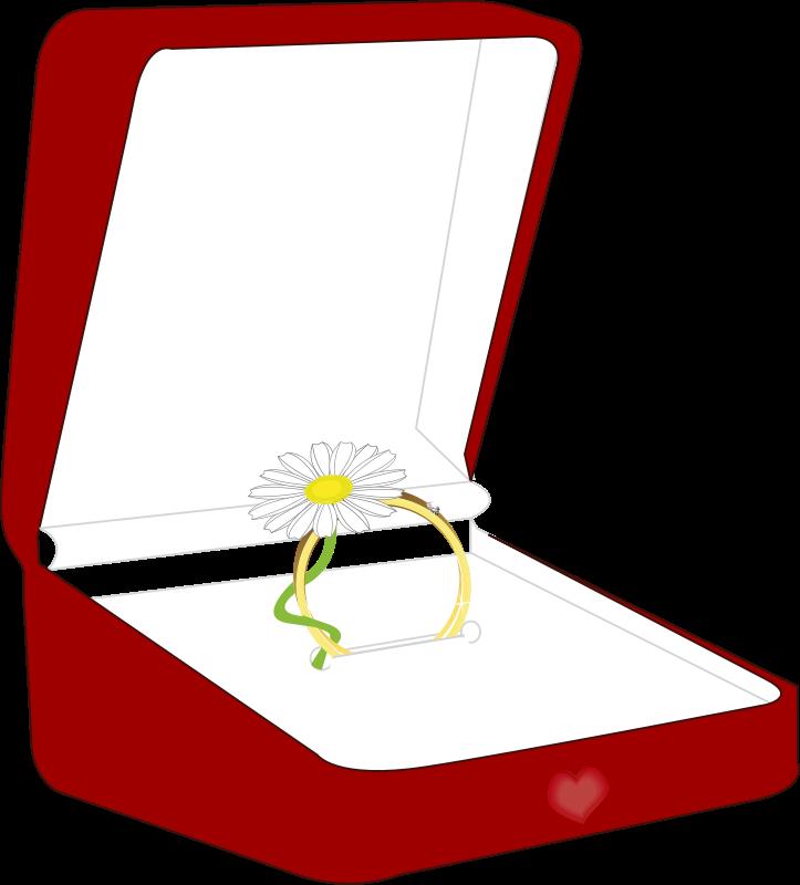 Free a ring box