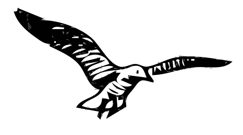 Free Herring Gulls 3