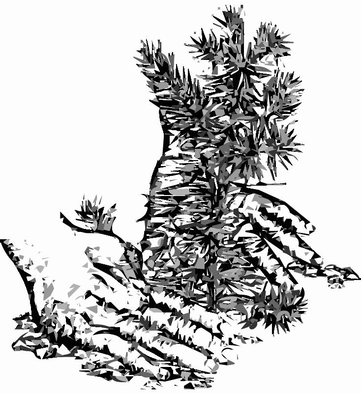 Free Planting a Tree