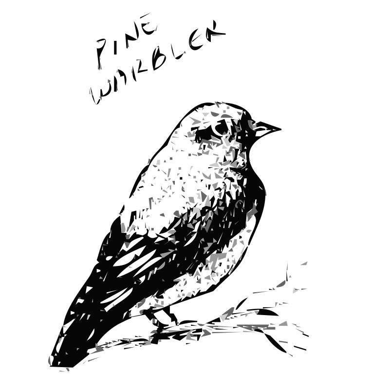 Free Pine Warbler Bird