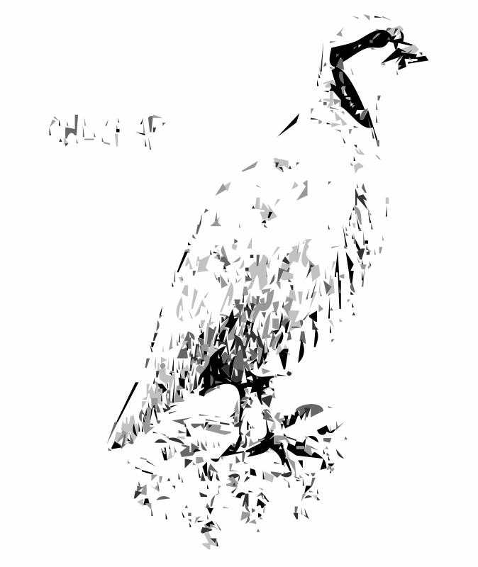 Free Clipart: Chuckar Bird | worldlabel