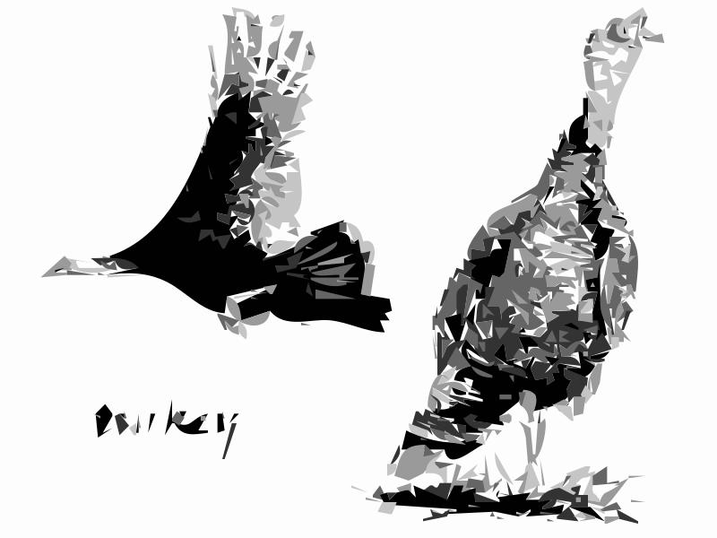 Free 2 Turkey Birds