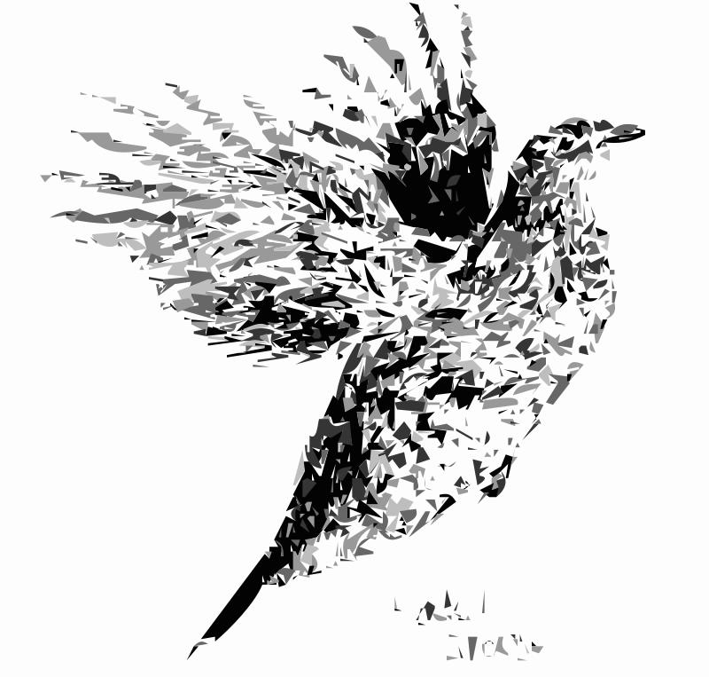 Free Rufflerd Grouse Bird 2