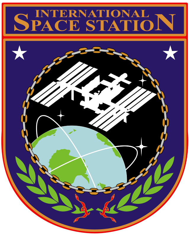 Free ISS Insignia