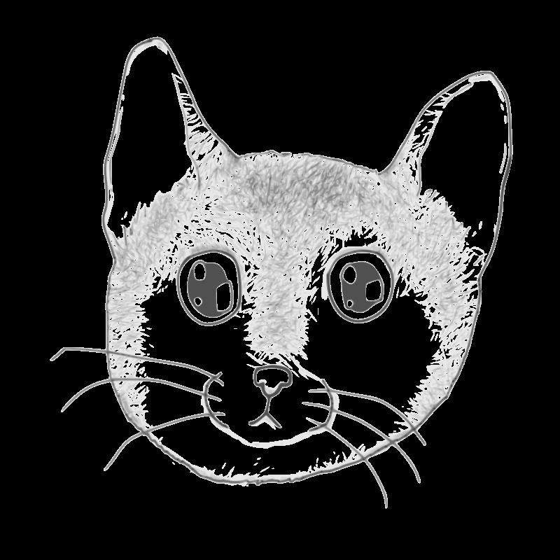 Free A stripped kitten face