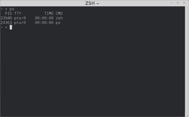 Free ZSH Terminal