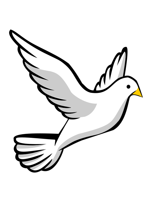 Free flying dove