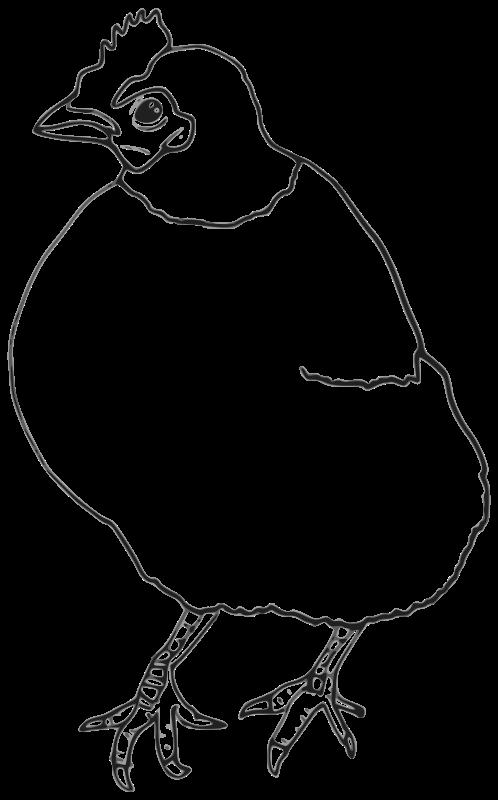 Free Hen Outline