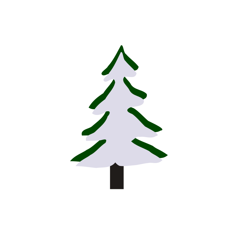 Free Pine in winter