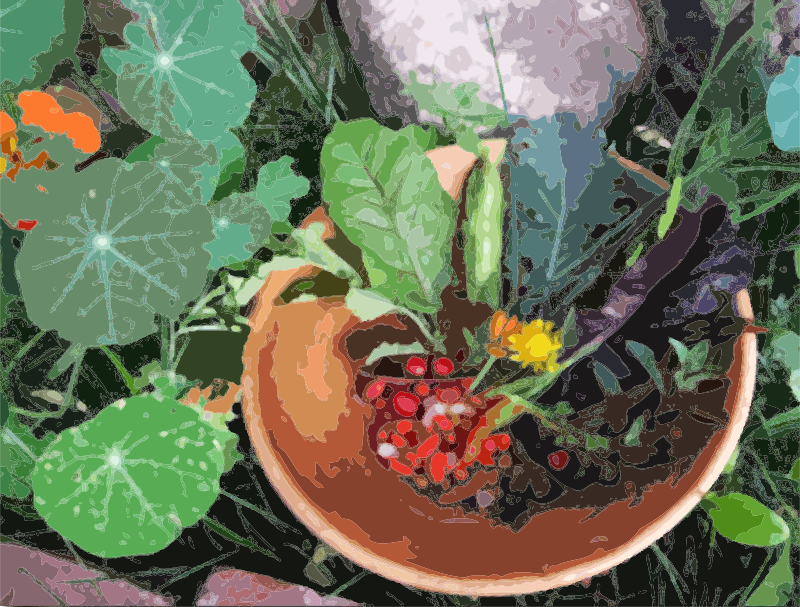 Free A bowl of flowers, berries and greens