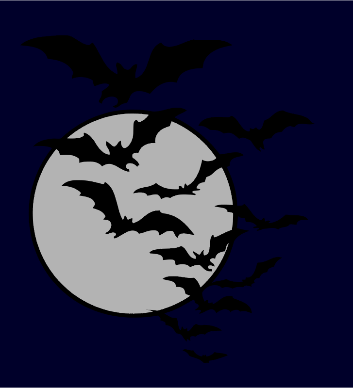 Free Bat night