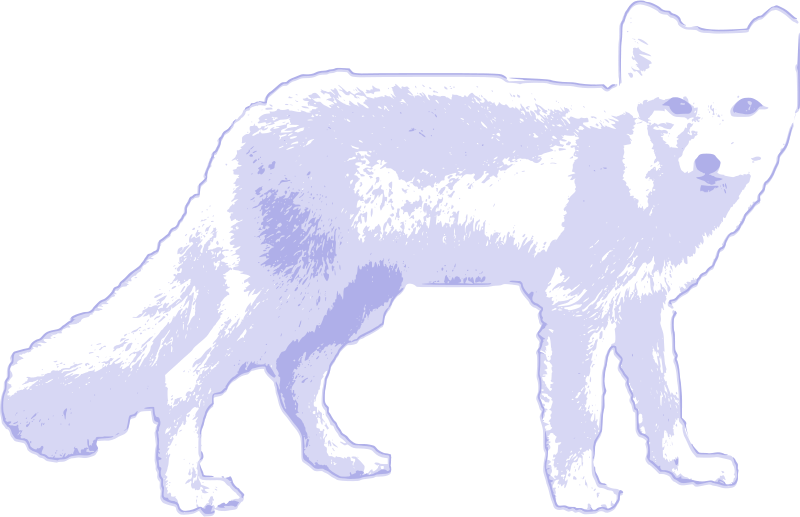 Free Clipart: Arctic fox | salvor