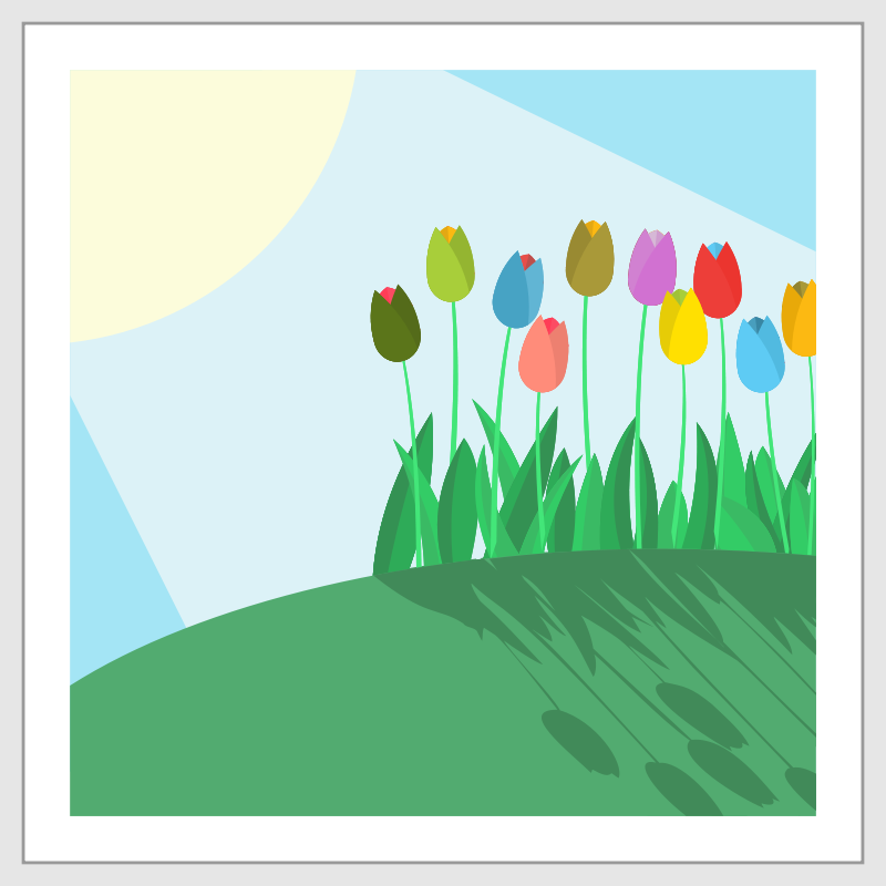 Free Tulips on a Hill