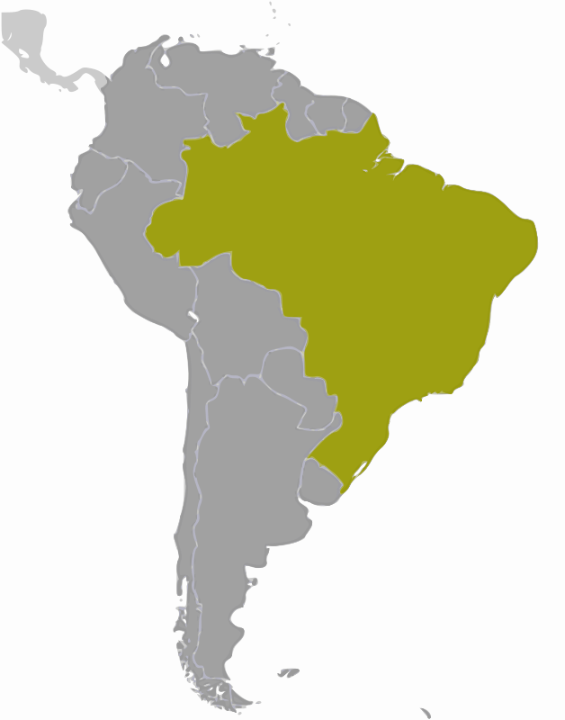 Free Brazil location