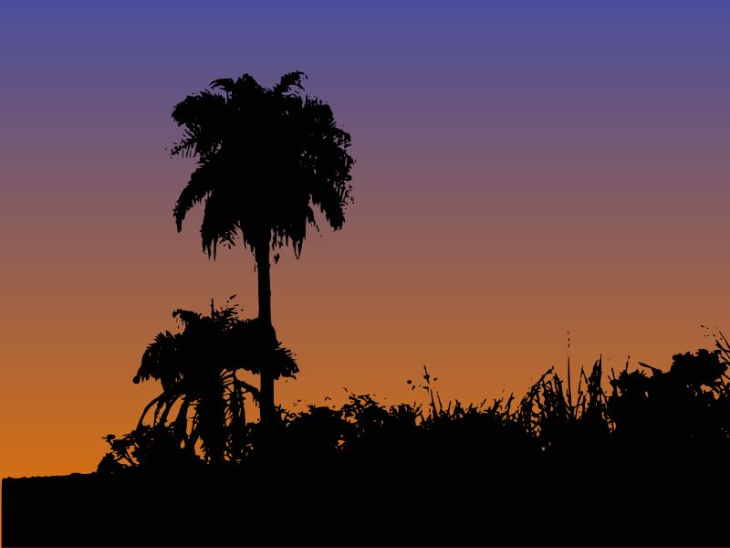 Free Palm Tree Silhouette