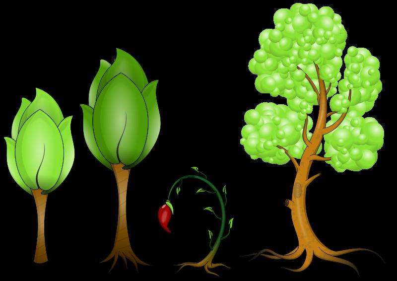 Free Plantas