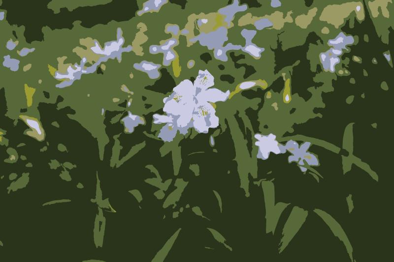 Free Original Aiflowers 478