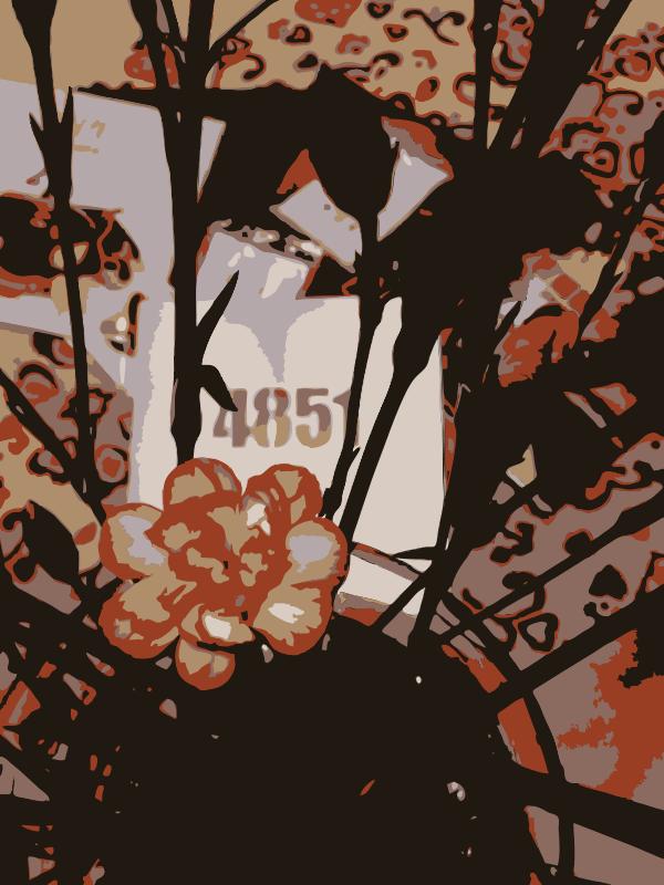 Free Original Aiflowers 484