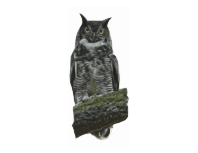 Free Great Horned Owl, bleach bypass
