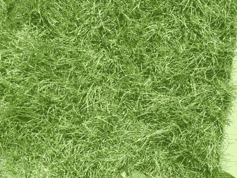 Free Grass texture