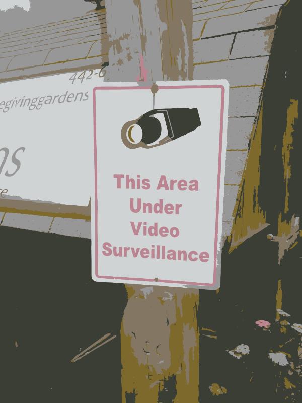 Free More video surveillance