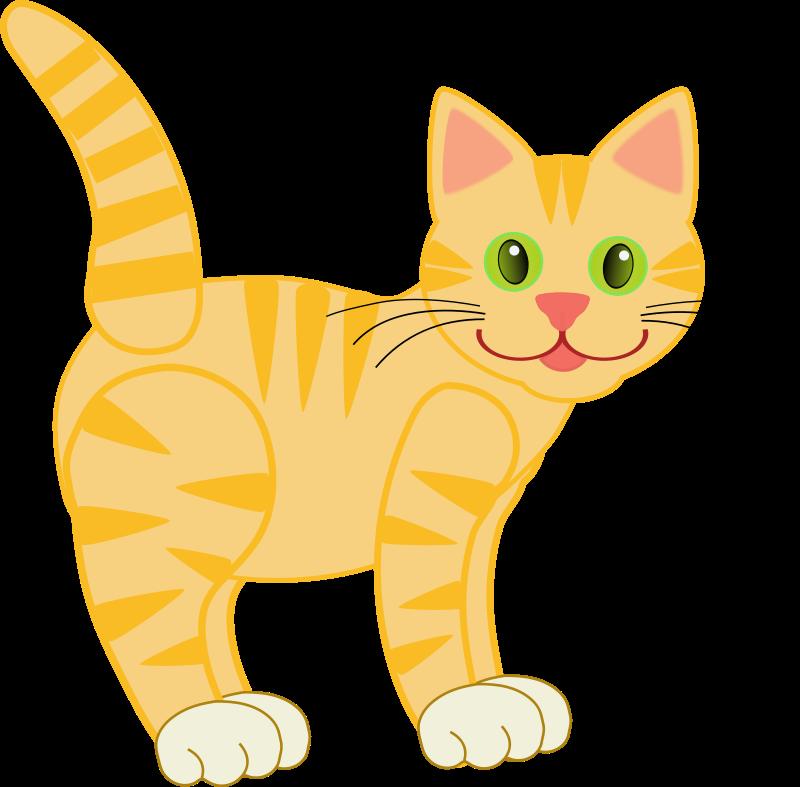 Free Yellow Tiger Cat(four legs)