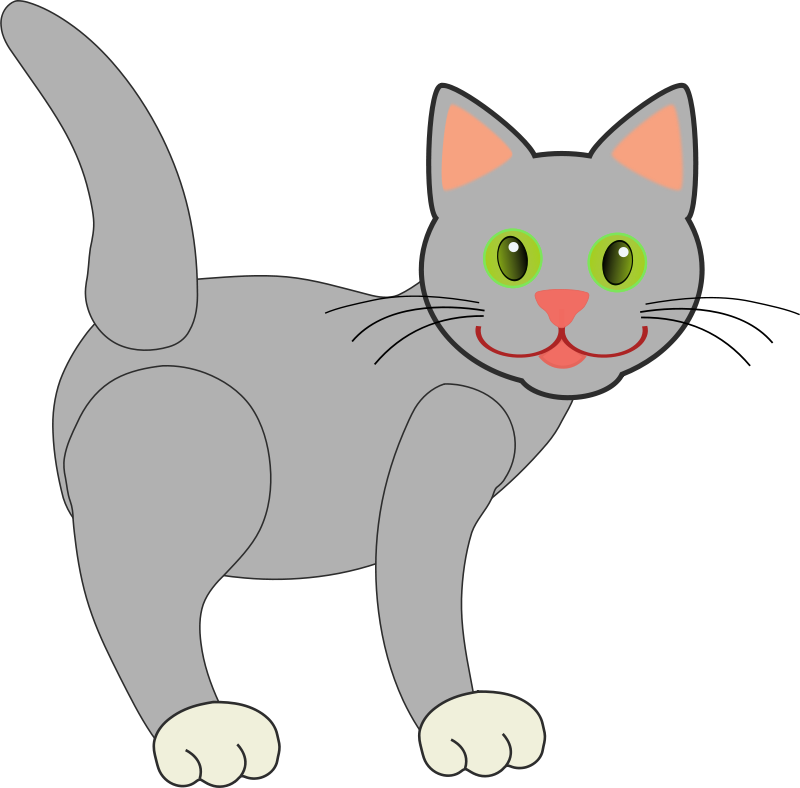 Free Gray Cat