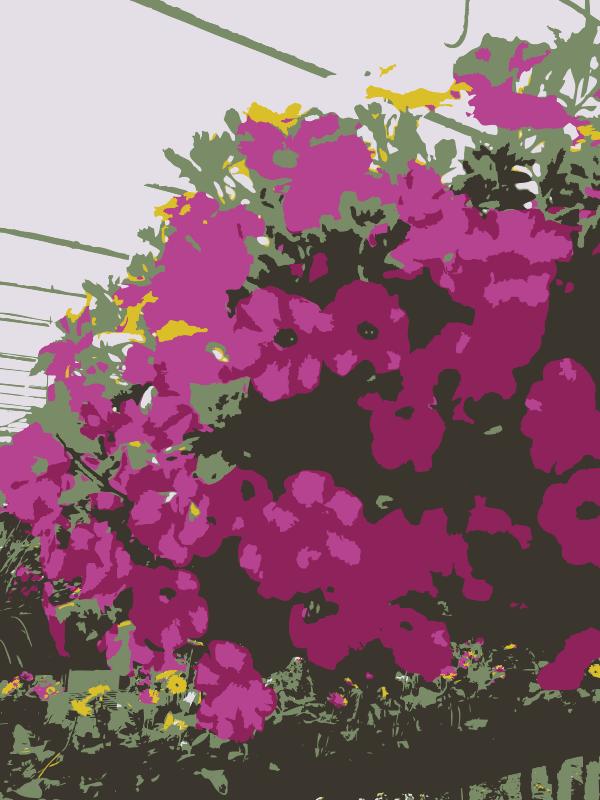 Free So many Missouri aiflowers flowers 2