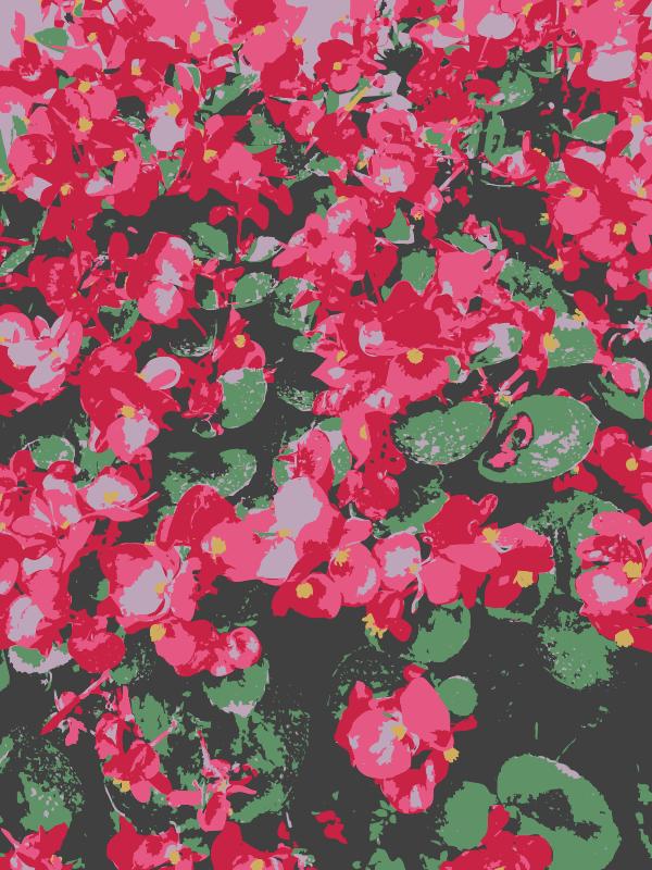 Free Aiflowers ghostshowers more flowers