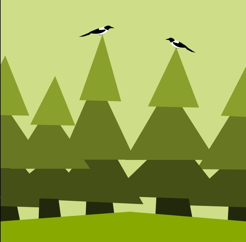 Free fir forest horizontaly seamless pattern