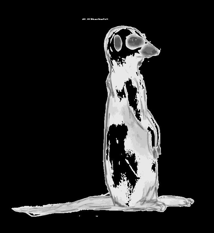 Free Meerkat Sketch