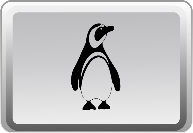 Free Clipart: The Linux Key | Merlin2525