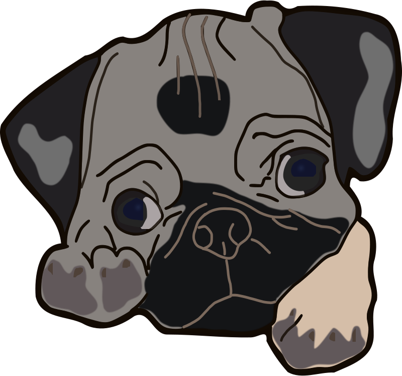 Free Cute Pug