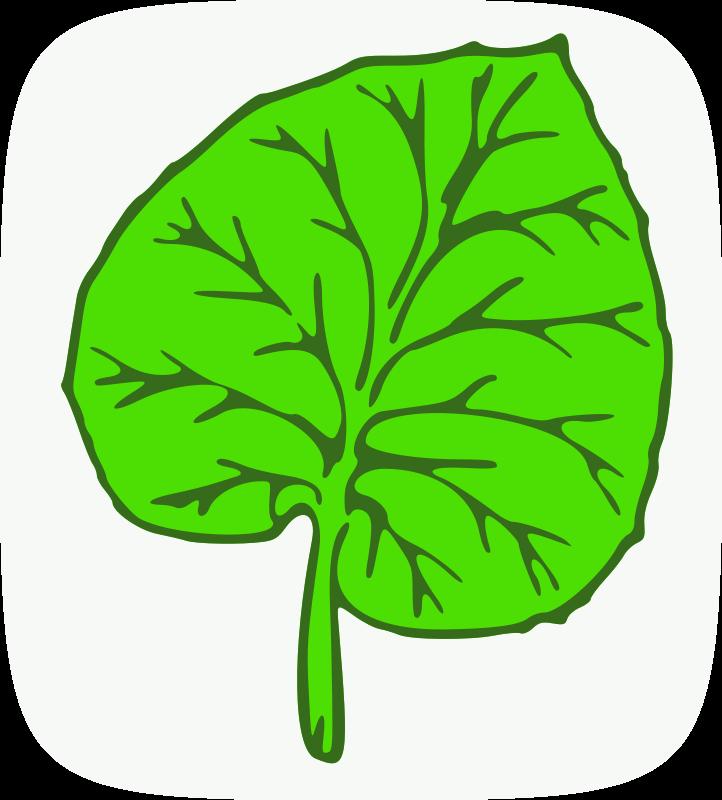 Free Botany Quiz Award