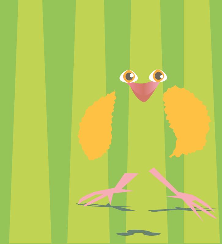 Free Spring  Chicken