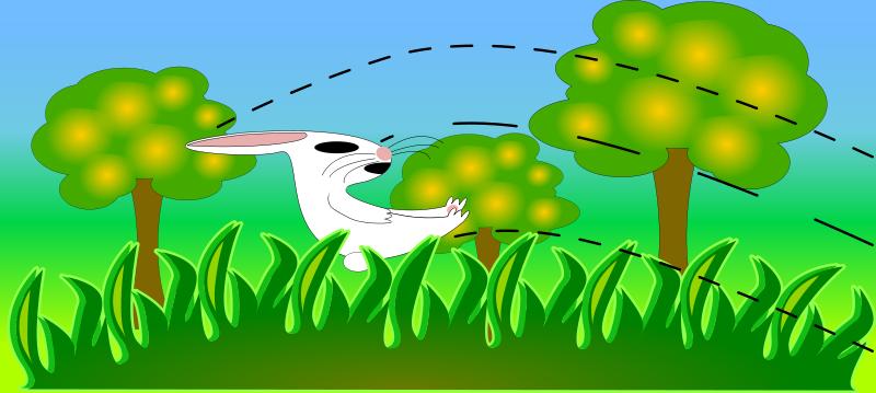 Free conejo paisaje