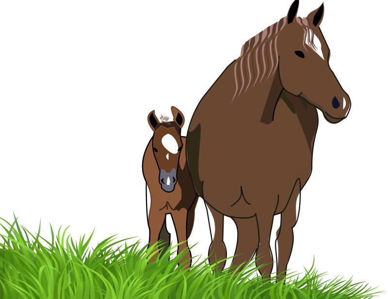 Free mare and foal