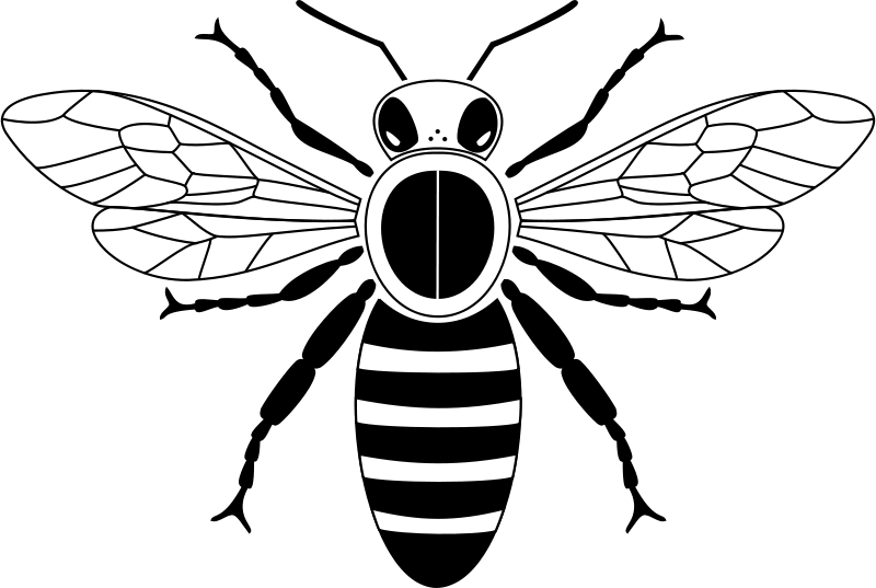 Free Simple bee from above