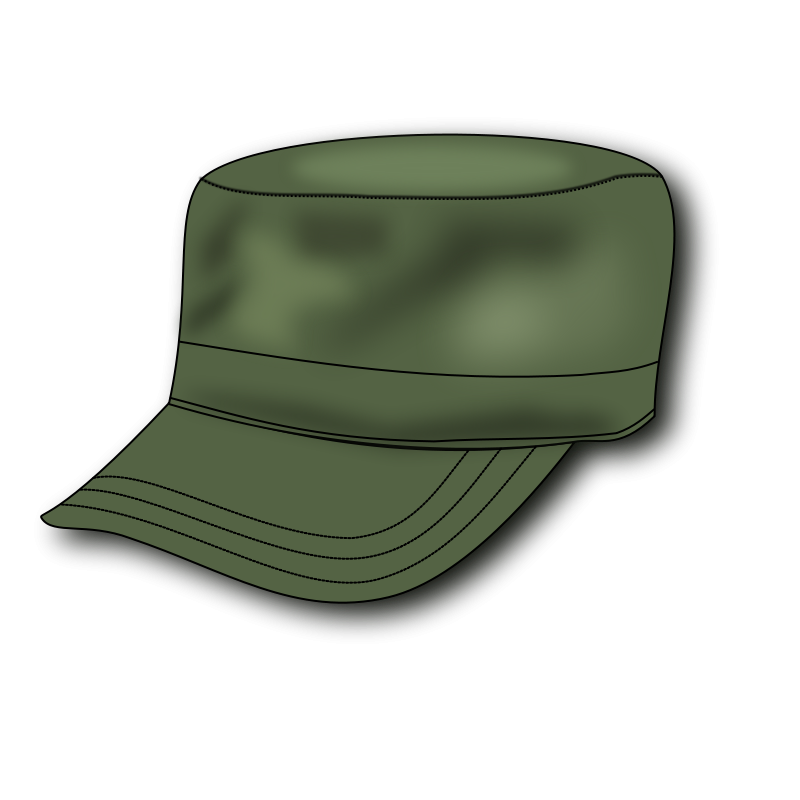 Free Army hat