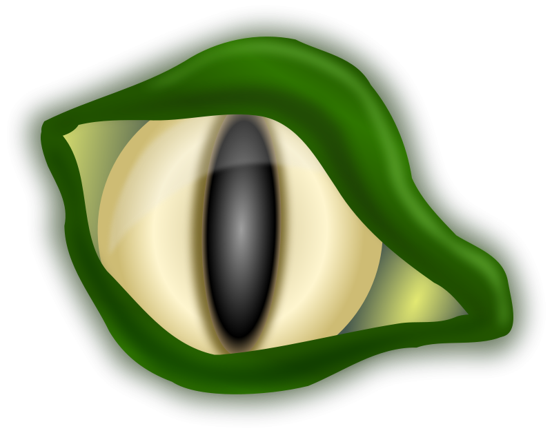 Free Croc eye