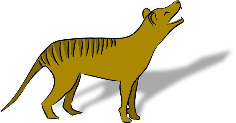 Free thylacine