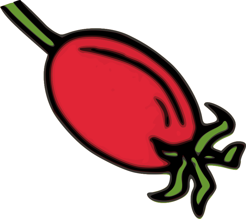 Free Rose Hip Fruit