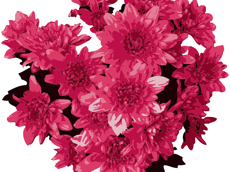 Free Red Flowers