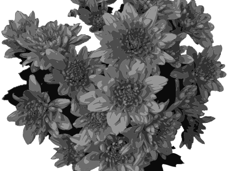 Free Flowers  in Greyscale